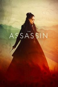 The Assassin (Cìkè Niè Yinniáng) (2015)